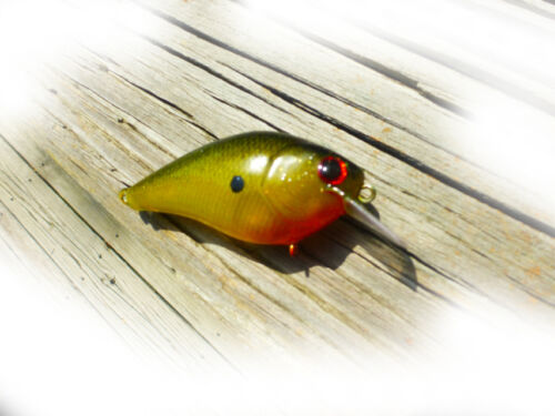 EVERGREEN  FISHING LURE CRANKBAIT CUSTOM PAINTED  LUCKYCRAFT STYLE SQUAREBILL