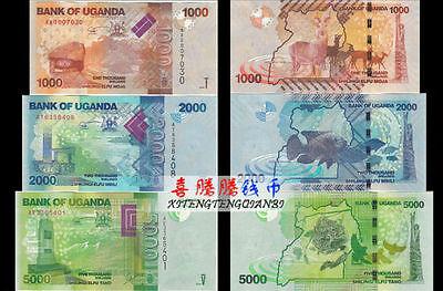 UGANDA 1000 2000 5000 10000 SHILLINGS 2015-2017 UNC SET OF 4