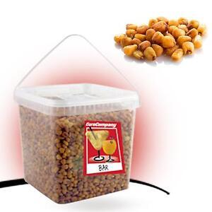 Volontaire Secchiello Mais Tostato Da 2,30 Kg Snack Per Aperitivo Stuzzichino Linea Bar Dernier Style