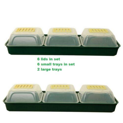 6 small  trays 2 Large trays 6 Propagator Lids Windowsill Propagator Set