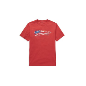 ae540117 New Polo Ralph Lauren Boys' USA Flag T-Shirt SIZE 2T,3T,4,S,M,L,XL ...