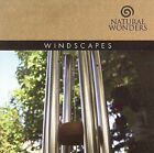 Windscapes by David Arkenstone (CD, 2006, Green Hill Productions)