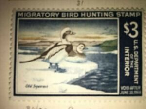 Migratory-Bird-Hunting-Stamp-Duck-Old-Squaws-1967