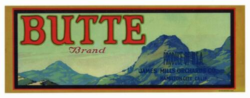 **AN ORIGINAL LABEL** BUTTE Vintage Sutter Buttes Fruit Crate Label Mountain