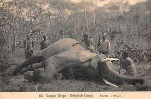 Kongo-Belgisches-Nr-61531-Elefant-Ganzsachen-Matadi
