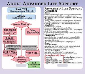 Algoritmo-de-soporte-vital-avanzado-Tarjeta-de-referencia-Cordon-als-ACL