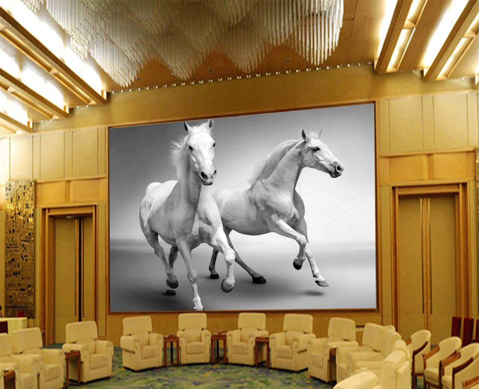 3D Handsome Horses 4036 Wall Paper Wall Print Decal Wall Deco Wall Indoor Murals