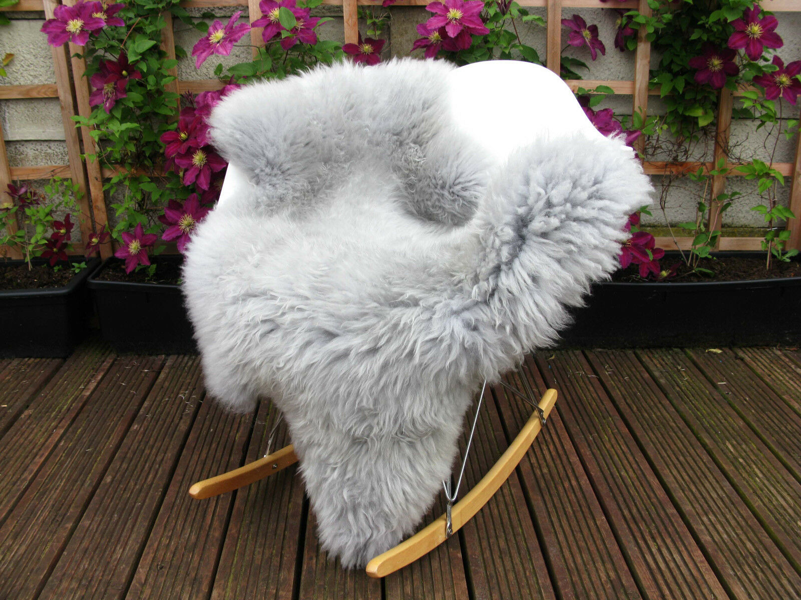 Véritable Gris Argent British unique Tapis en peau de mouton Tapis unique Teints 232 45b27b