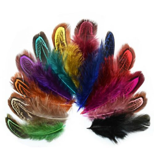 Colourful Guinea Fowl Wing Feathers Chicken Fly Craft Hat Arts Decorations UK