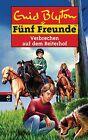Fünf Freunde 68 - Verbrechen auf dem Reiterhof von Enid Blyton (2013, Gebundene Ausgabe)