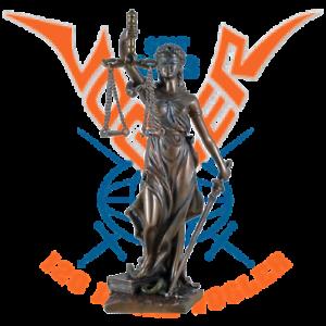 Bronzeskulptur-Justitia-21cm-Goettin-der-Gerechtigkeit-BRONZIERT-708-5802
