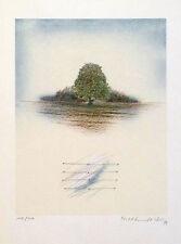 Michael S. Schmidt-Stein: Ohne Titel. Original-Lithografie, signiert/nummeriert