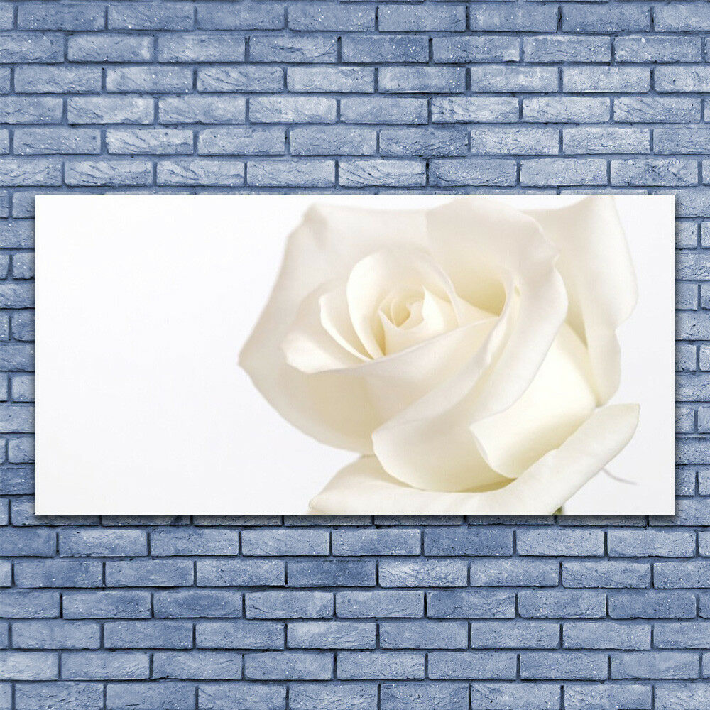 Canvas print Wall art on 140x70 Image Picture Rosa Rosa Rosa Floral d550f8