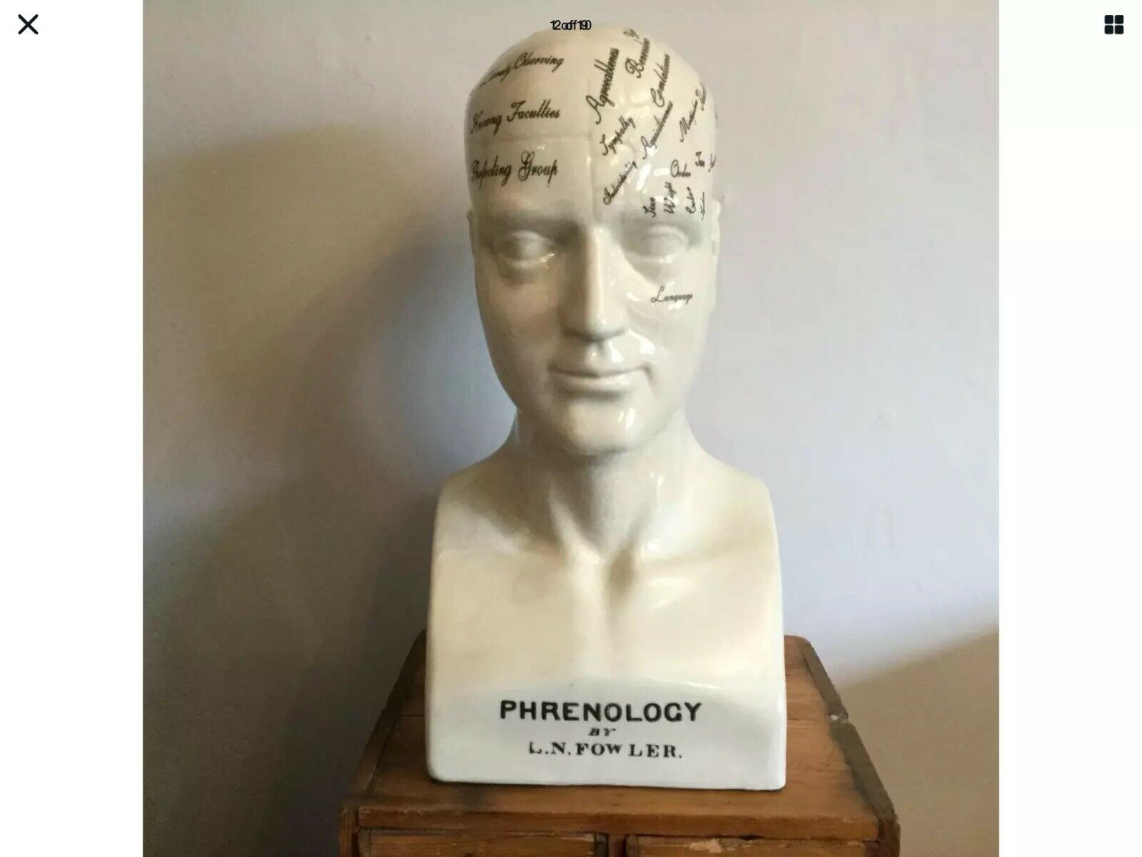 "12/"" 30cm New Medical Student Gift Ornament Ceramic Decorative Phrenology Head"