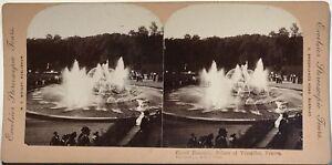 Versailles Parc France Photographie Stereo Vintage Albumine Nombreux Dans La VariéTé