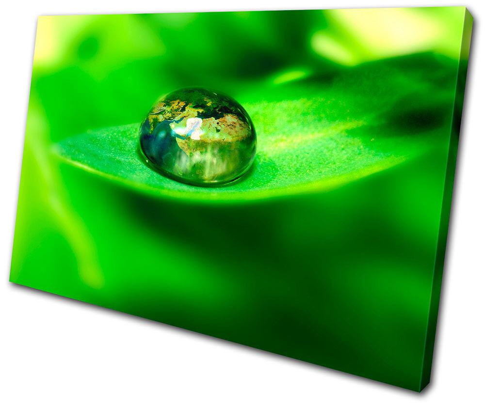 Canvas Art Picture Print Decorative Photo Leaf Water Drops nature Floral