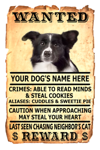 SMOOTH COLLIE Wanted Poster FRIDGE MAGNET No 1 DOG