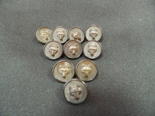 Paquete De 10 pequeño 15 mm Marrón Oscuro botones de diseño de cabeza de zorro de plástico