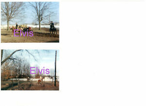 ELVIS-PRESLEY-RIDING-RISING-SUN-HORSE-GRACELAND-CANDID-LOT-OF-2-PHOTOS