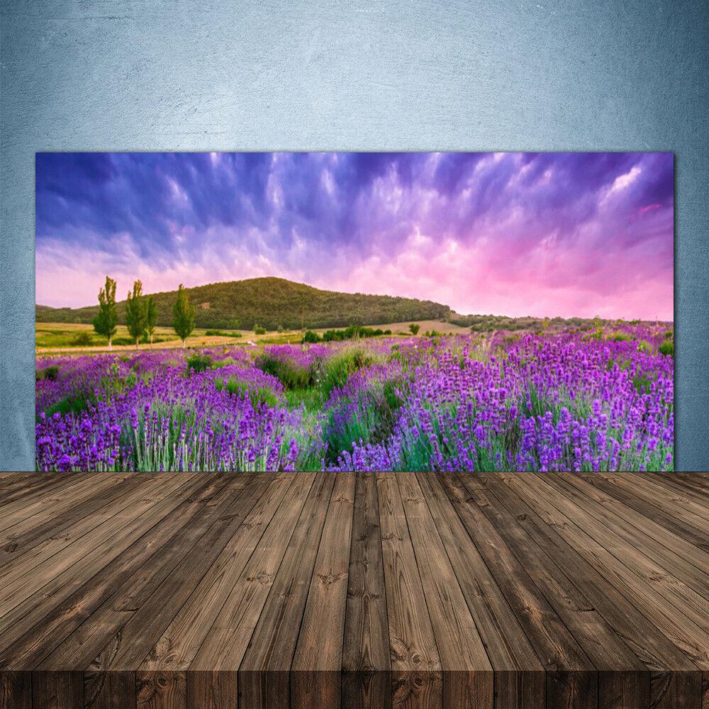 Crédence de cuisine en verre Panneau 140x70 Nature Prairie Fleurs Montagnes