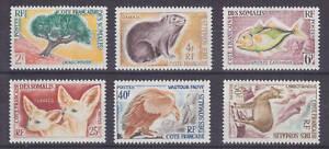 Somali-Coast-Sc-287-292-MNH-1962-Animals-complete-set-fresh-VF