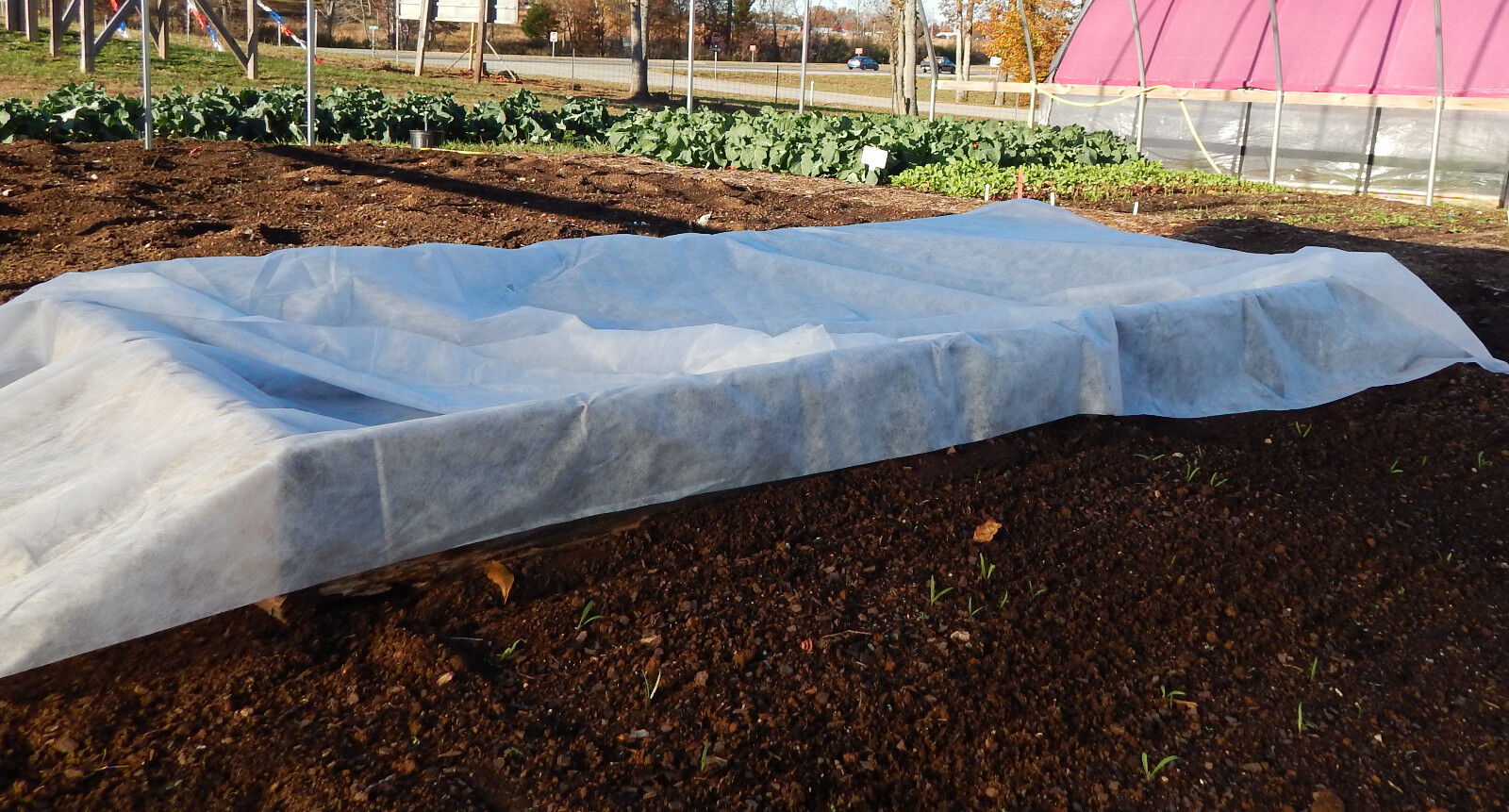 AG-05 Floating Row Crop Cover / Frost Blanket / Garden Fabric 6' x 250' - 1 Each