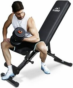 weight bench strength training muscle exercise workout