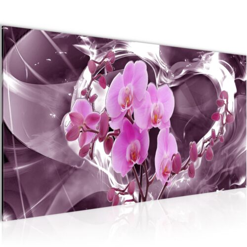 WANDBILDER XXL BILDER Blumen Orchidee VLIES LEINWAND BILD KUNSTDRUCK 203612P