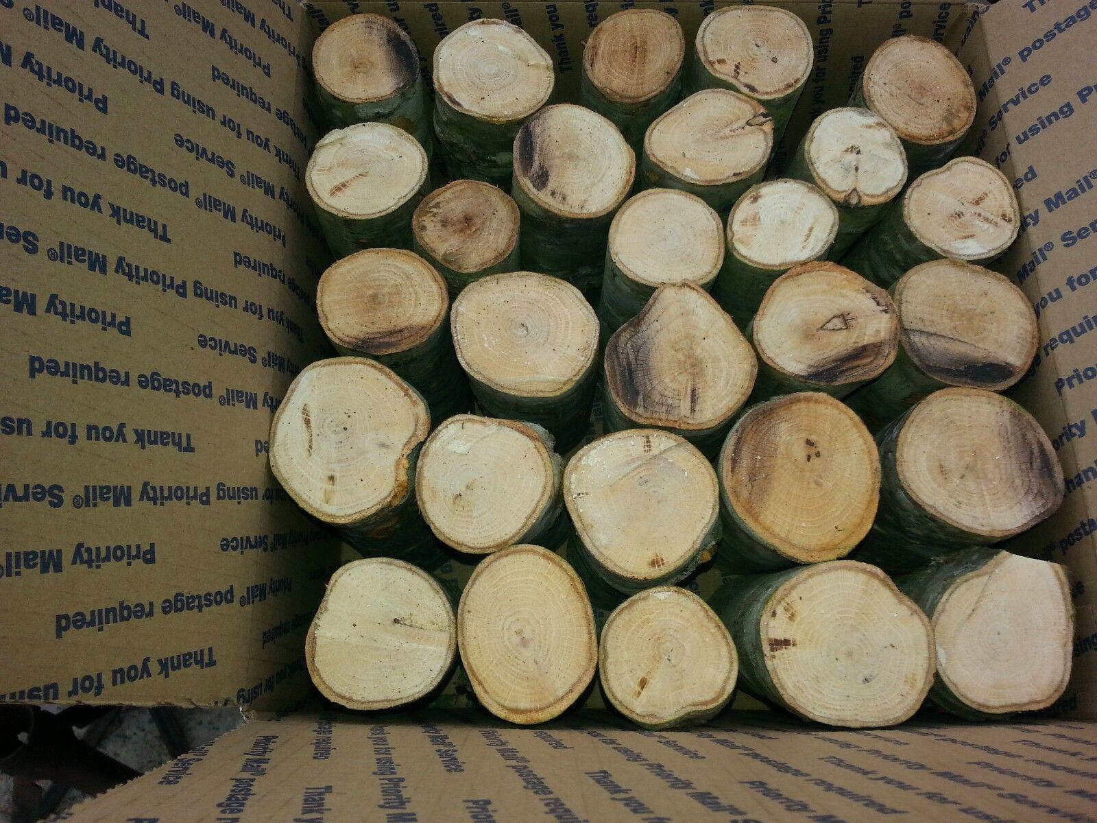 All Natural Native Arkansas Hickory Smoker Wood Chunks