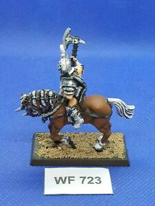Warhammer-Fantasy-Chaos-Marauder-Horseman-Champion-Well-Painted-WF723