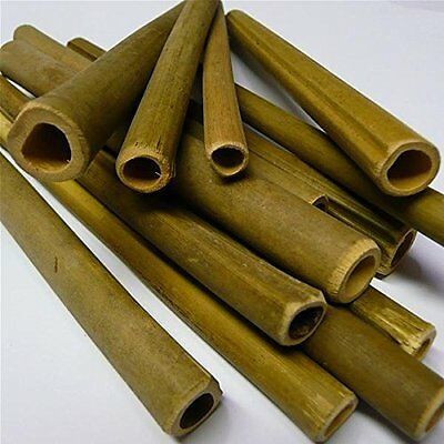 Wildlife World Solitary Bee Tubes Wooden (Pack of 50)