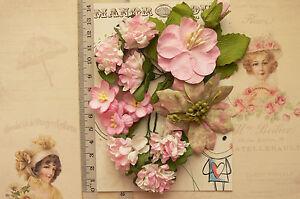 Flowers-Blossoms-Azalea-12-amp-Leaves-PINK-GREEN-WHITE-5-Styles-PAPER-20-60mm-VA6