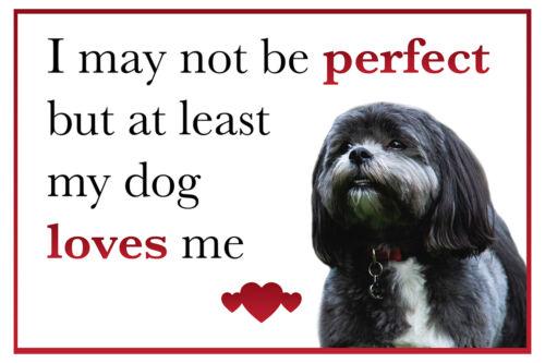 Funny My Dog Loves Me Shih Tzu Dog Vinyl Car Van Sticker Pet Lover