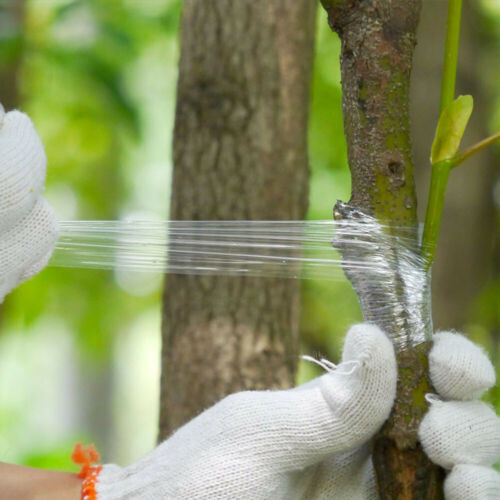 Garden PE Tape Grafting Parafilm Stretch Film Secateurs Graft Branch Bind Belt