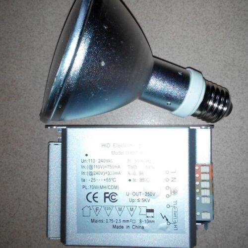 HID ballast and 35w-70w HQI uvb uva metal halide UV lamp for reptile sun light