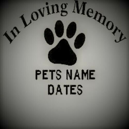 In Loving Memory of A Pet Vinyl Decal  Many colors