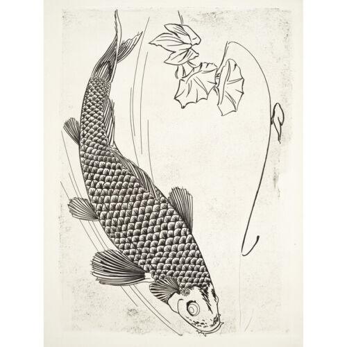 Peces Bracquemond Estilo Japonés Pared Arte Impresión Enmarcado 12x16 Grabado