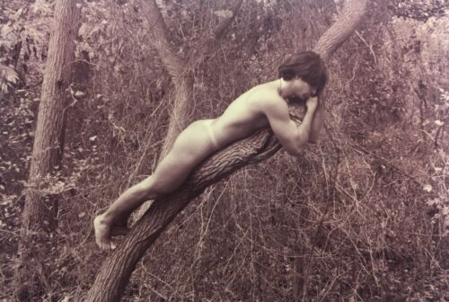 NUDE IN TREE—Erotic Male Outdoor Nature Photo Art by Self-portrait Model PABLO