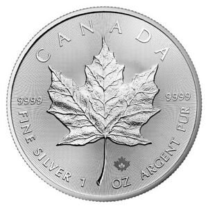 LOT-of-3-2019-1-oz-SILVER-CANADIAN-MAPLE-LEAF-Encapsulated