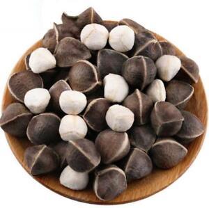 Details about 10 pcs Moringa Drumstick tree seeds