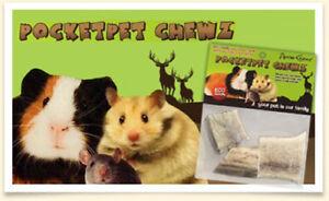 AntlerChewz-Pocket-Pet-Antler-Chew-for-Guinea-Pig-Hamster-Gerbil-squirrel
