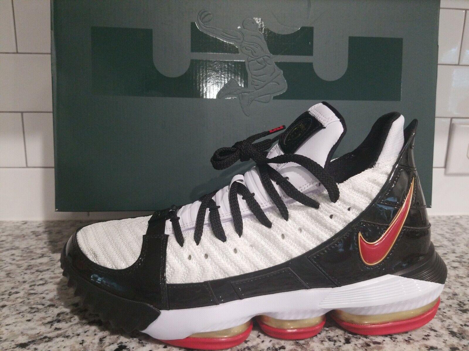Nike Lebron XVI SB \
