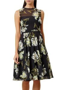 HOBBS-EVE-SHEER-BLACK-FLORAL-CHIFFON-50-039-S-FIT-N-FLARE-SKATER-DRESS-10-159-ONCE