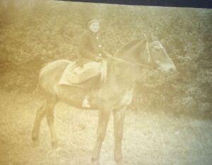 Antique-German-World-War-1-Hildegard-Woman-amp-Horse-Small-Cabinet-Photo-1917