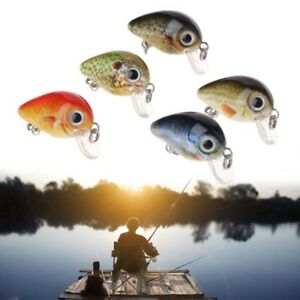 5-Pcs-Box-Fishing-Bait-Wobbler-Artificial-Lure-Crankbait-2-7cm1-5G-Mini-Plastic