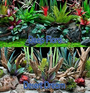 Seaview-Deep-Flora-Desert-Dream-18in-Terrarium-Double-sided-Background-BGDD4-18