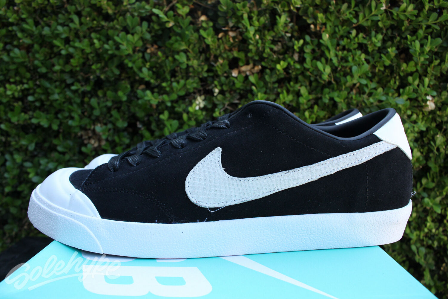 NIKE SB ZOOM ALL COURT CK Price reduction