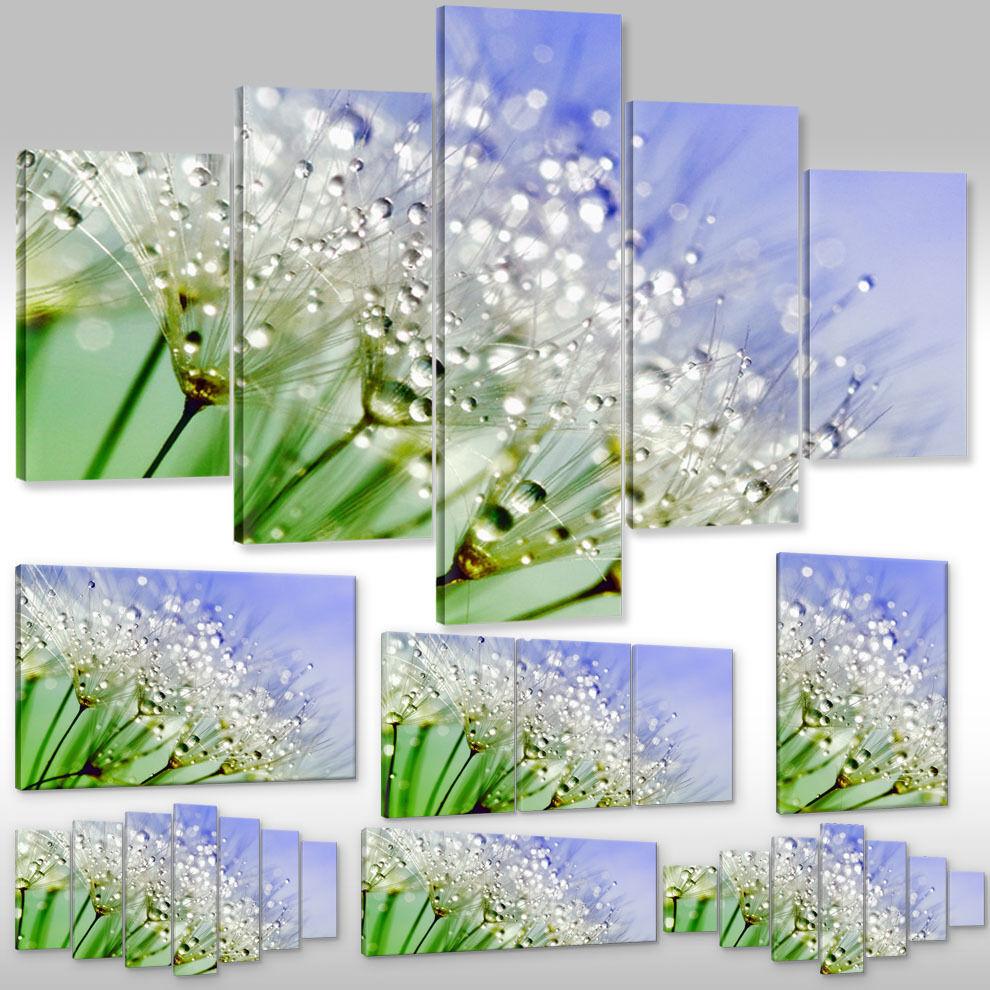 Leinwandbild Canvas Wandbilder Kunstdruck Pflanzen Blaumen PusteBlaume Tautropfen
