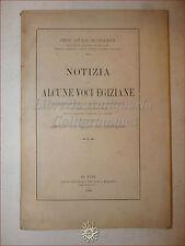 ETIMOLOGIA: Buonamici, ALCUNE VOCI EGIZIANE Affinità con Parole Indoeuropee 1900