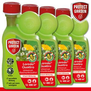 Protect Garden 4 x 400 ml Loredo Quattro Universal-Rasenunkrautfrei Weißklee